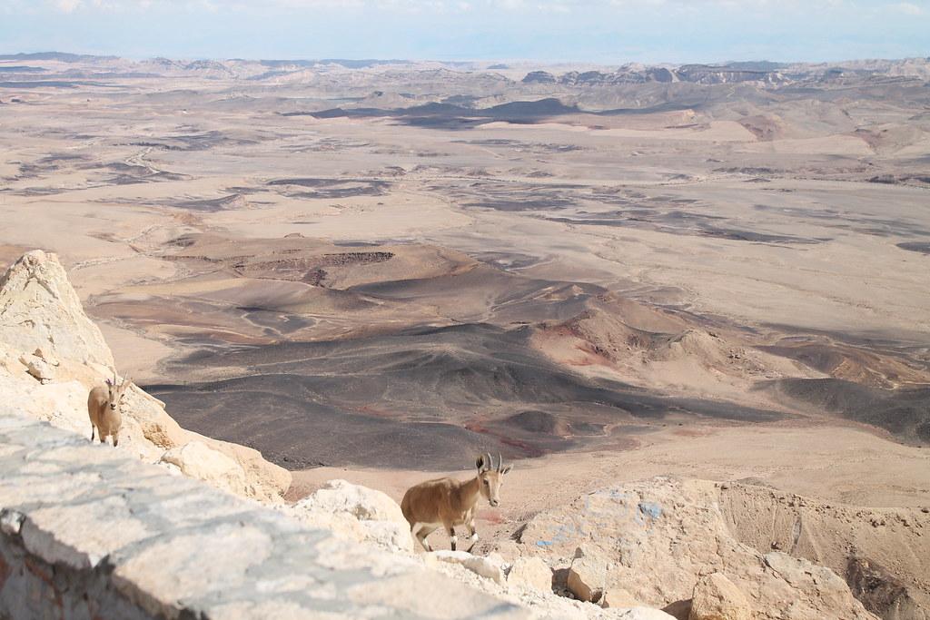 水追蹤技術突破 科學家利用氪同位素揭開以色列古地下水層的秘密