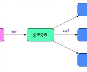 "解Bug之路-中間件""SQL重複執行"""