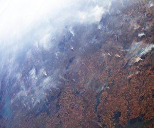 歐洲太空總署監測 2019巴西亞馬遜大火面積與長期平均相去不遠