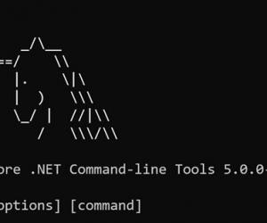 【譯】Announcing Entity Framework Core 5.0 Preview 5