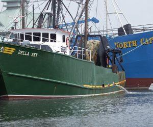 2020疫情下的海洋:非法捕撈更盛、缺氧死區持續擴大_台中搬家公司_台中搬家公司